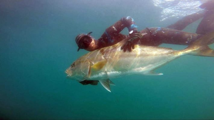 spear fishing things to do in manta ecuador